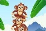 Scimmie in equilibrio